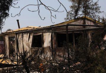 Το Καποδιστριακό Πανεπιστήμιο Αθηνών στο πλευρό των πυρόπληκτων της Κύπρου