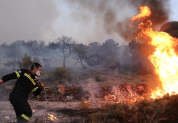 «Μου άρεσε να βλέπω φλόγες»: Σοκάρει 14χρονος που συνελήφθη για πυρκαγιές στην Ελλάδα