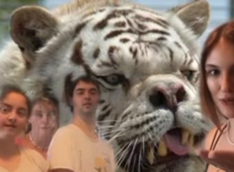 Παιδιά με σύνδρομο Down ζώα βλέπουν ζώα με το ίδιο σύνδρομο και δεν φαντάζεστε πώς αντέδρασαν (video)
